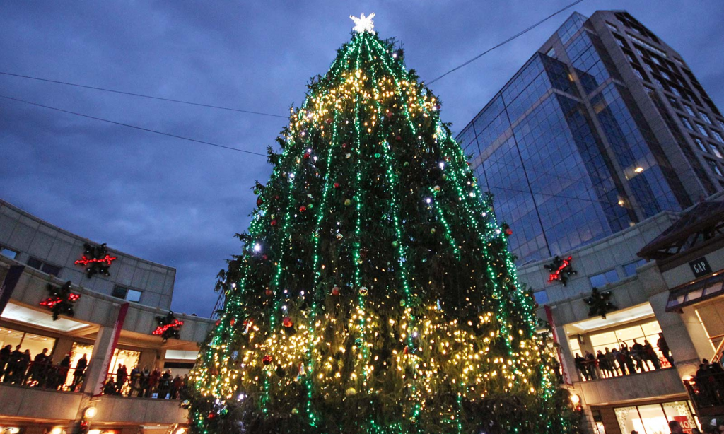 Boston Massachusetts 2017 Christmas Tree
